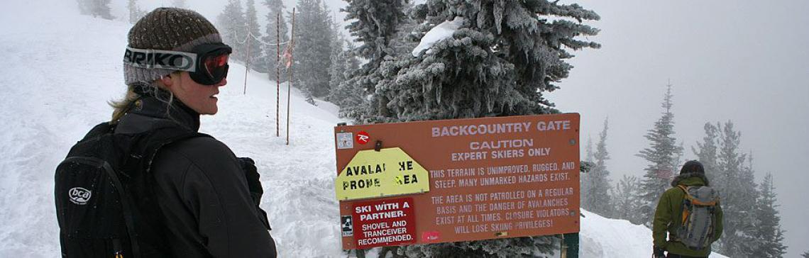 Backcountry Gate