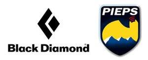 bd-pieps-logo