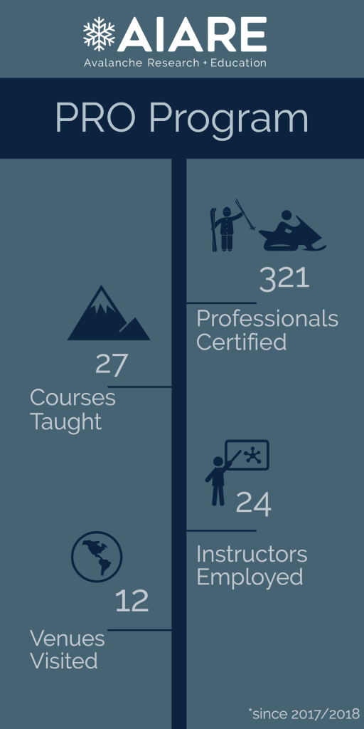 professional course infographic